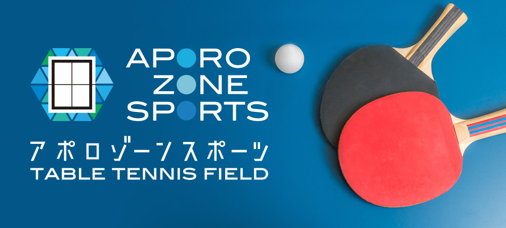 APORO ZONE SPORTS TABLE TENNIS FIELD